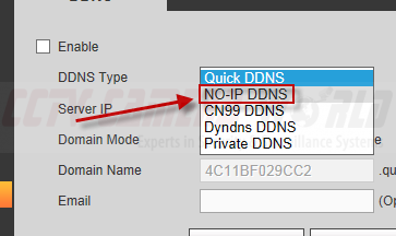 Selecting NOIP as the DDNS service