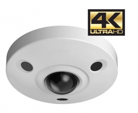 360 Degree Fisheye Dome Camera 12MP 4K