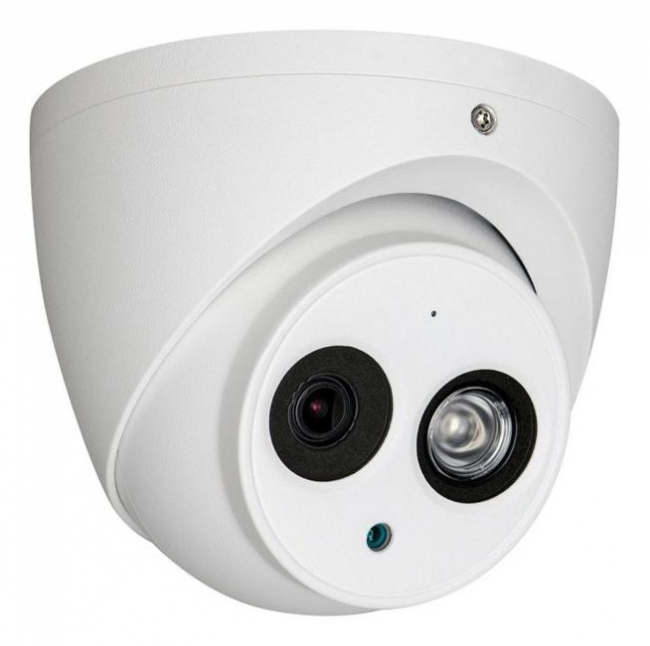 Outdoor 1080p Dome Camera With Microphone