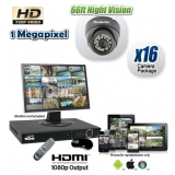 HDCVI 16 Dome Camera Security System