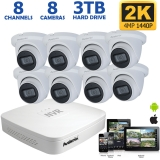 8 Channel IP NVR System, 4MP Vandal Proof Dome Cameras