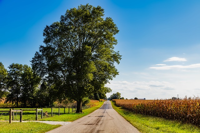 The Safest Cities in Indiana